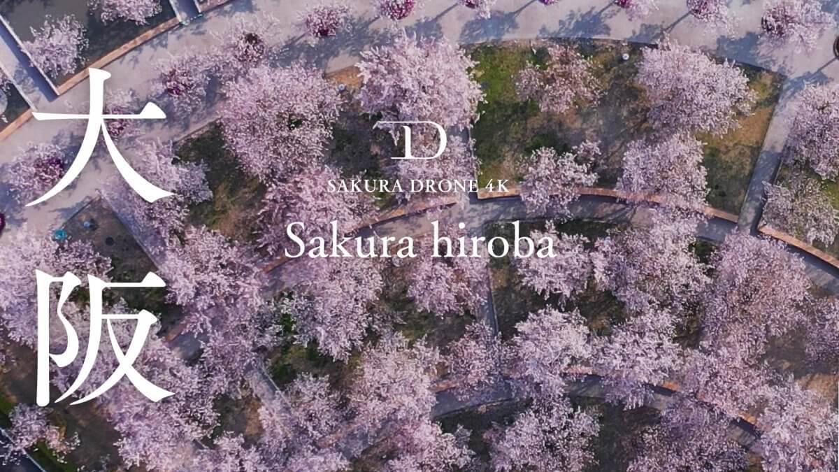 パナソニックミュージアムさくら広場(大阪府門真市)|桜ドローンプロジェクト2020