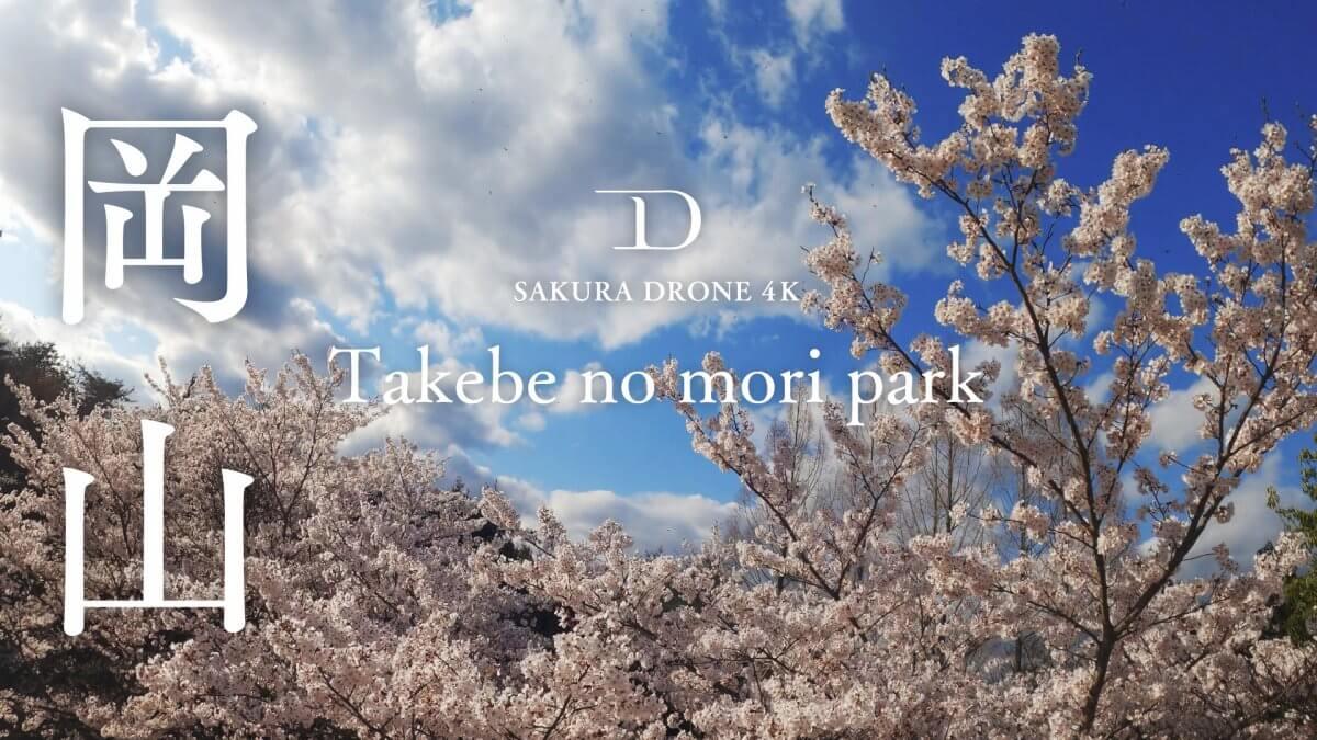岡山県たけべの森の桜|桜ドローンプロジェクト2020