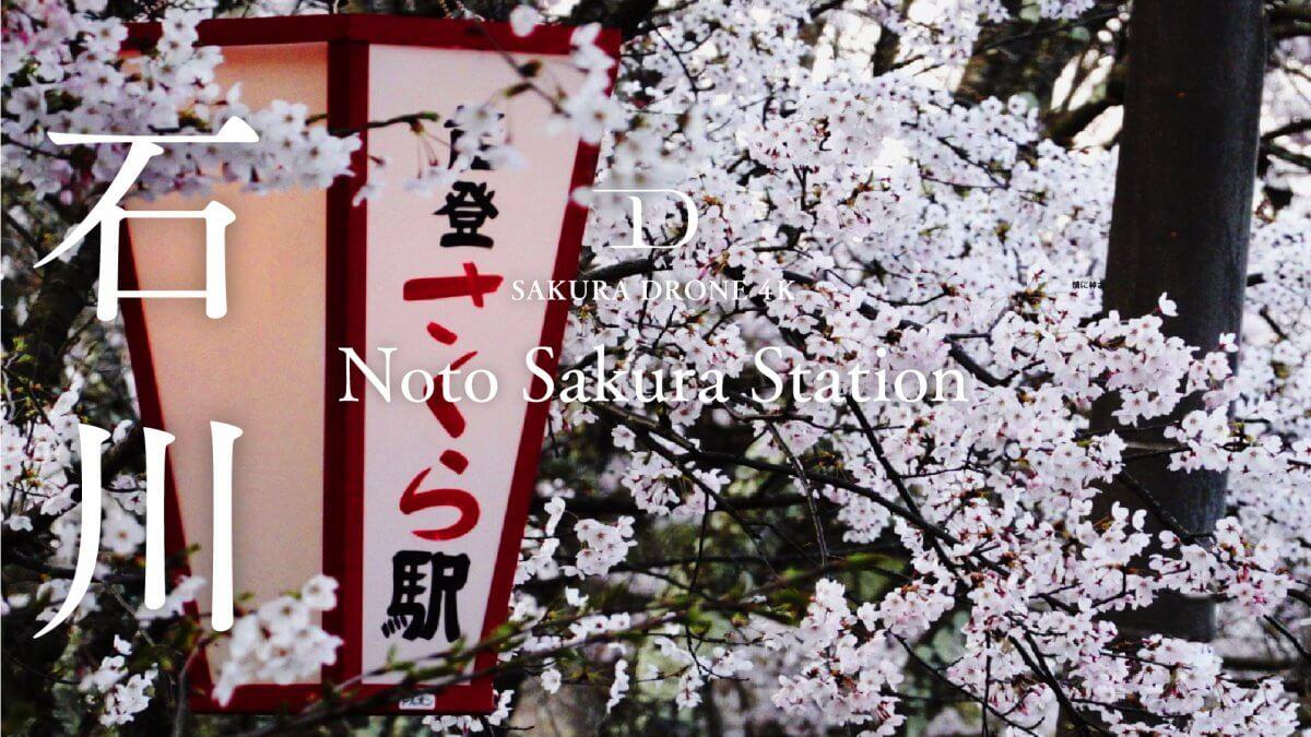 能登鹿島駅の桜(石川県鳳珠郡)|桜ドローンプロジェクト2020