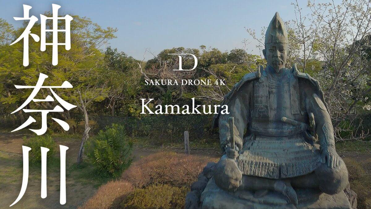 源氏山公園の桜(神奈川県鎌倉市)|桜ドローンプロジェクト2020