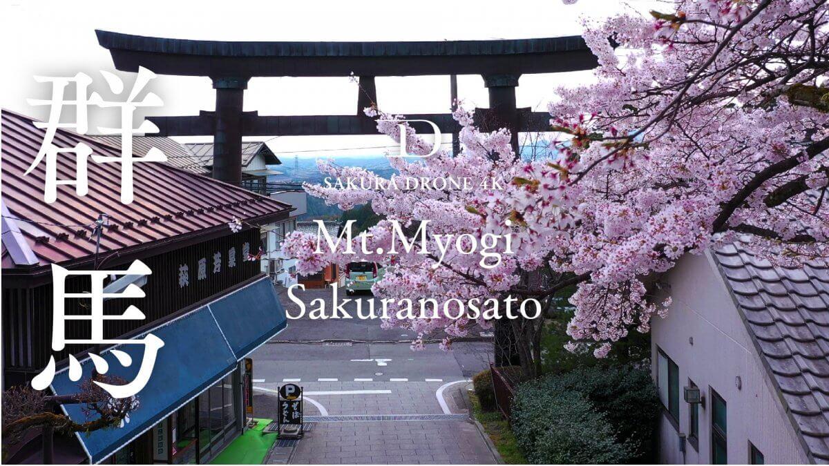 妙義神社の桜(群馬県富岡市)|桜ドローンプロジェクト2020