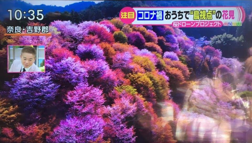 TBSテレビ「  ひるおび!」で「オンライン花見」が紹介されました!