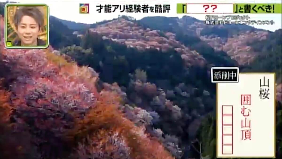 MBSテレビ「プレバト!!」で「桜ドローンプロジェクト」の桜映像を提供いたしました。