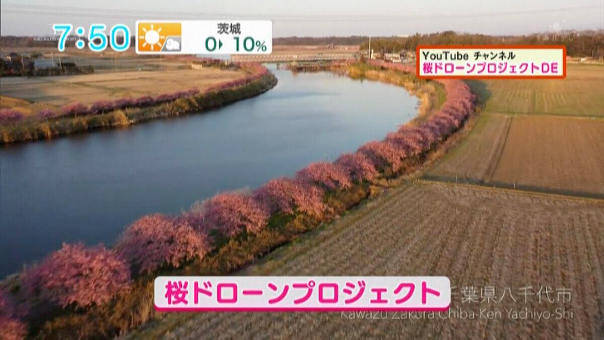 千葉テレビ放送「シャキット!」で「オンライン花見」が紹介されました!